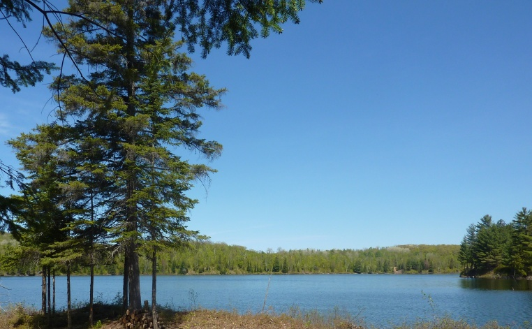 Petit Lac Murray in Spring